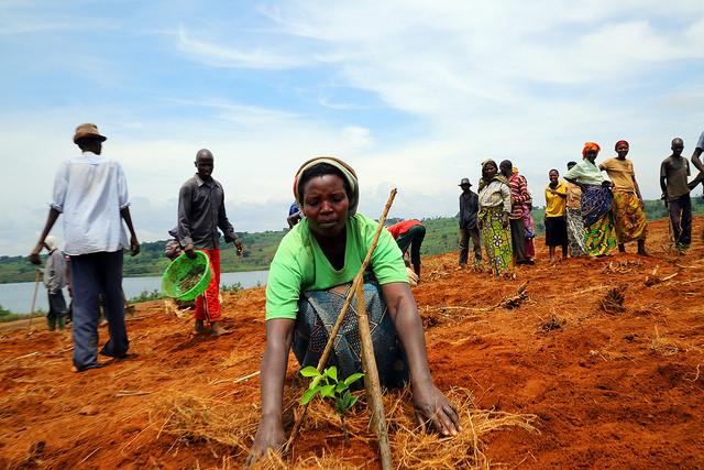 World Food Day 2014 observance in Rwanda