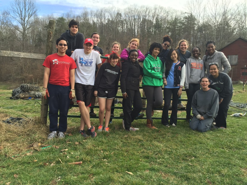 University of Maryland students volunteer at the Potager's farm in Hurricane, WV.