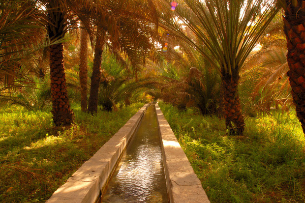 The traditional irrigation system, falaj, has been used in the Al Ain region since about 1,000 B.C., transporting water from boreholes to farms/Courtesy of Abu Dhabi Tourism & Culture Authority.